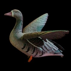 Sport Plast чучела машущего крыльями белолобого гуся, 1 шт.